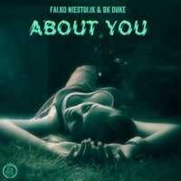 Falko Niestolik & BK Duke - About You (Cover)